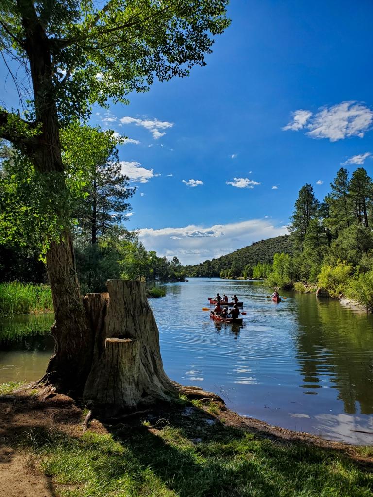 Groups of canoers glide across an Arizona lake