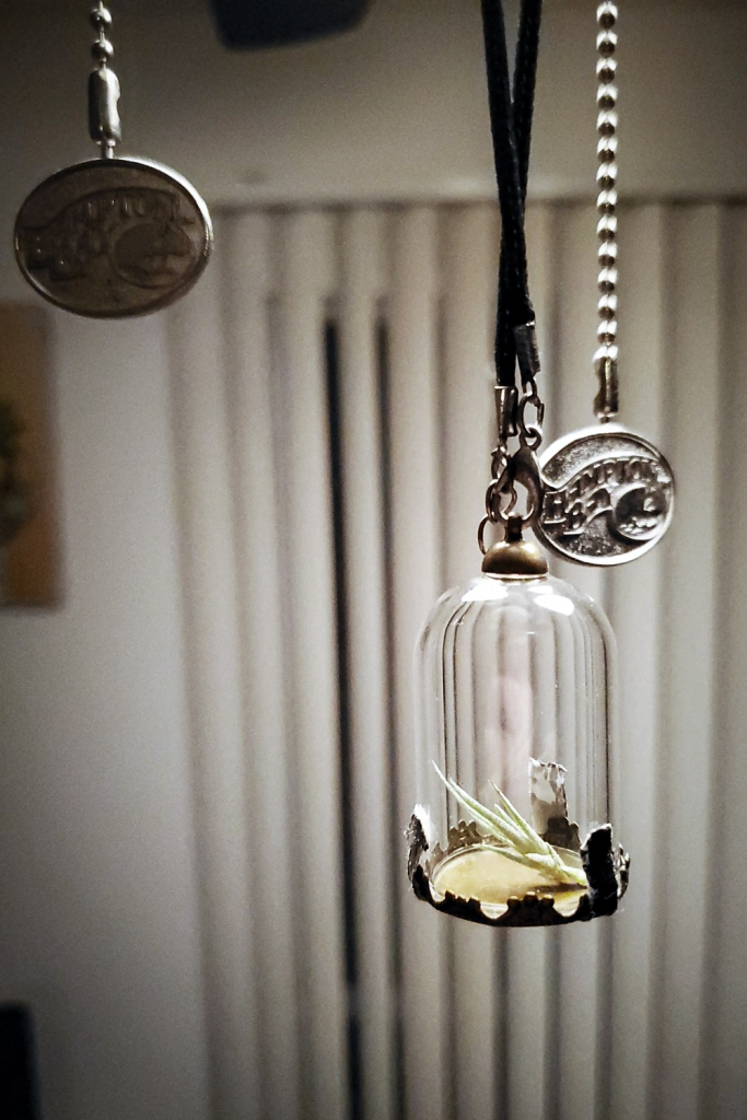 A tillandsia pup in a small glass necklace bottle
