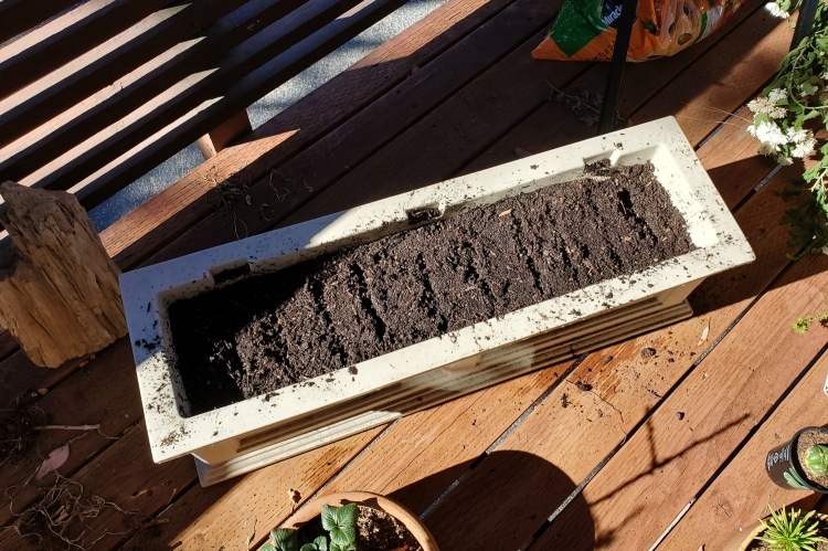 A long rectangular planter that's ready for some seeds