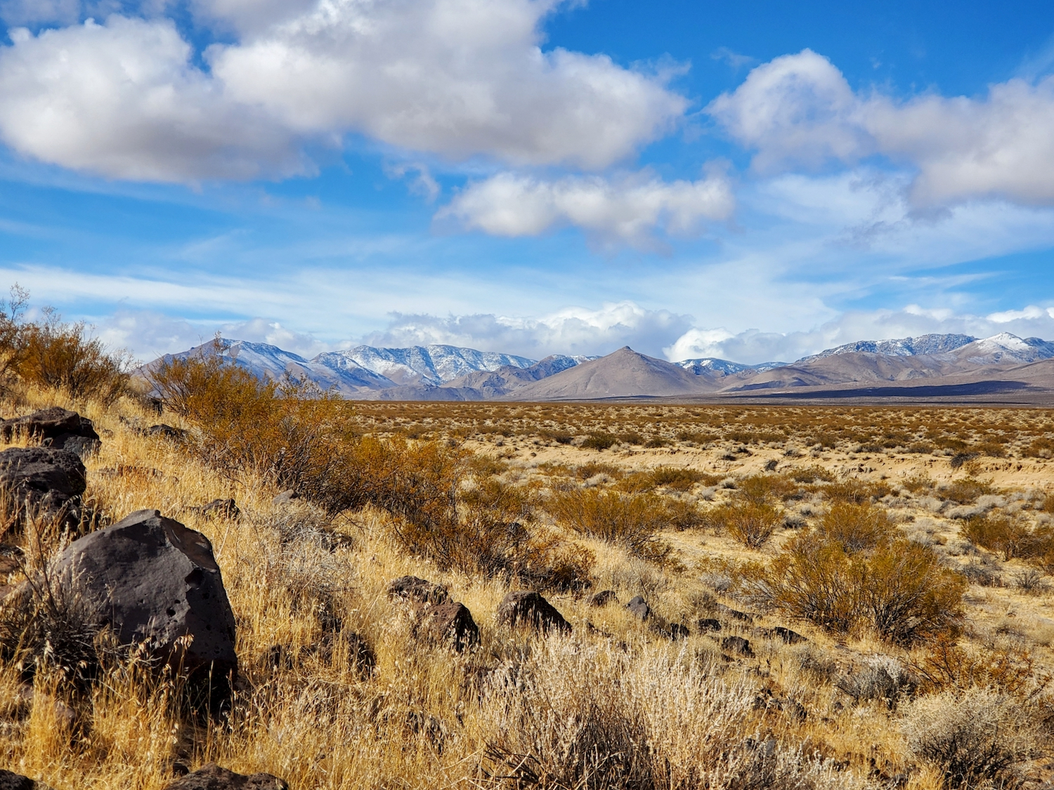 A section of the desert that looks out over snowy peaks