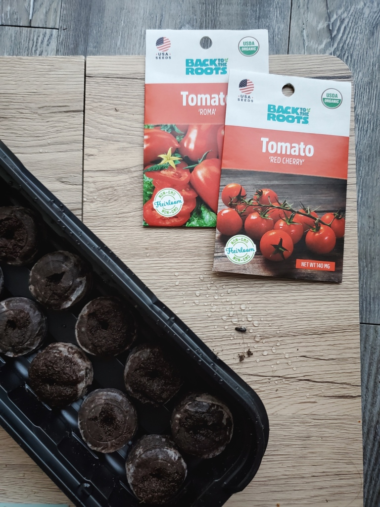 Tomato seeds ready to be turned into seedlings
