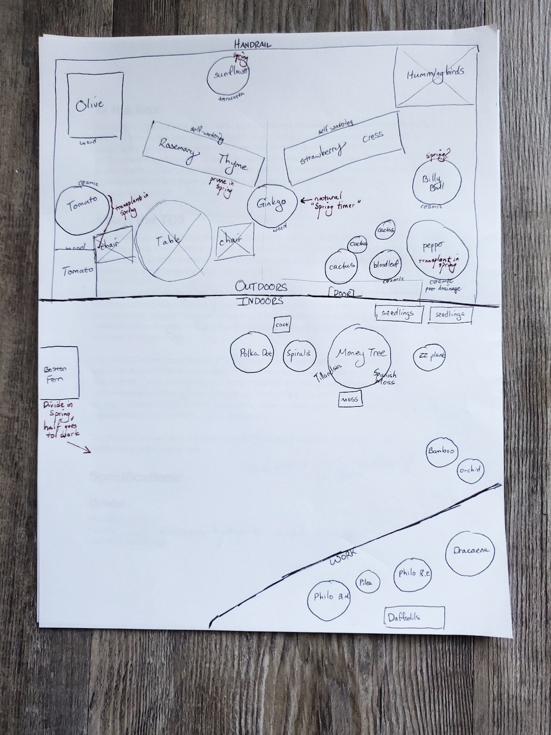 a plan for a garden drawn out on paper